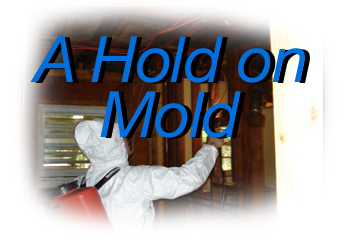 hold on mold