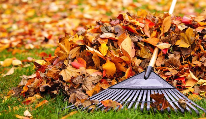 Making Fall Cleaning Easy